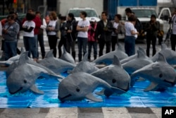 FILE - Papier mache replicas of the critically endangered porpoise known as the vaquita marina are displayed during an event in front of the National Palace calling on the Mexican government to take additional steps to protect the world's smallest marine mammal, in Mexico City, July 8, 2017.