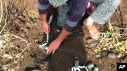 Hình chụp từ video ngày 19/5/2015 cho thấy tình nguyện viên thu gom bom chùm ở Daraa, Syria.