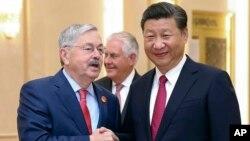 چین میں امریکہ کے سفیر ٹیری برینسٹیڈ چینی صدر کے ہمراہ (فائل فوٹو)