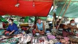Toneladas de peixe estragadas devido a corte de energia - 2:38