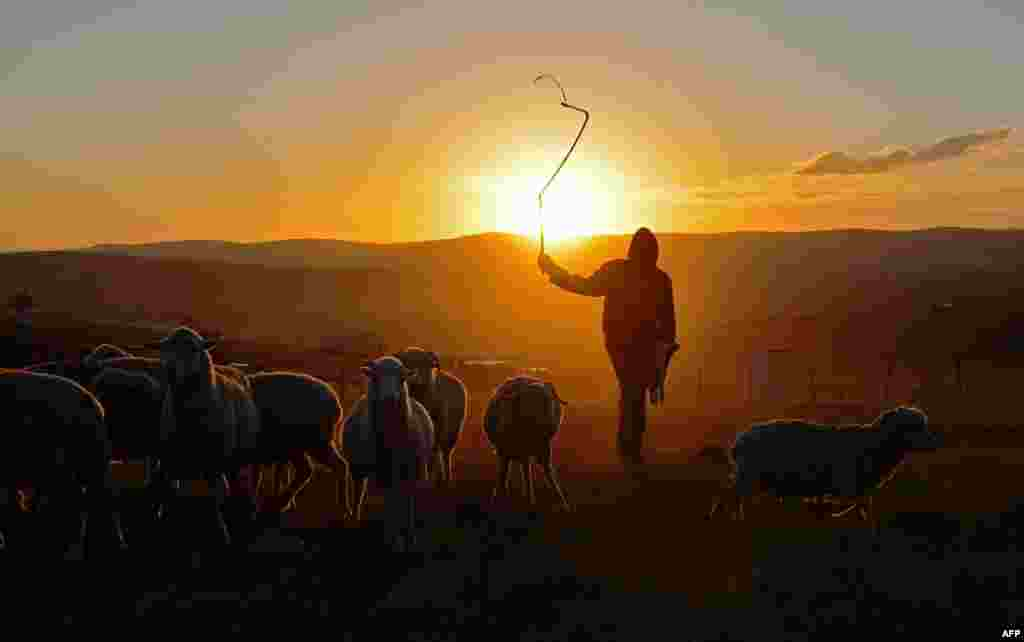 A shepherd boy is silhouetted in Qunu, a rural village where former South African President Nelson Mandela grew up.