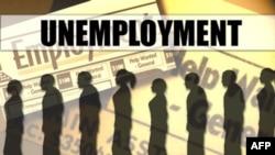 У США зменшилася кількість безробітних