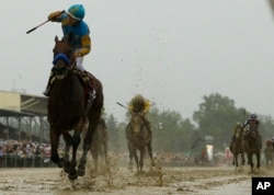 American Pharoah pulls away near the end of the race, which was run in heavy rain and very sloppy conditions. He'll go for horse racing's Triple Crown in the Belmont Stakes next month.