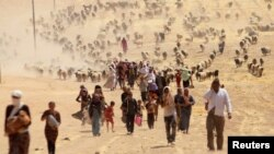 FILE - Displaced minority Yazidis, fleeing violence from forces loyal to the Islamic State in Sinjar town, walk toward the Syrian border, on the outskirts of Sinjar mountain, near Elierbeh of Al-Hasakah Governorate, Aug. 10, 2014.