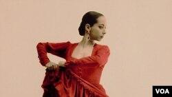 Seorang penari flamenco, tarian yang berasal dari Andalusia, Spanyol selatan.