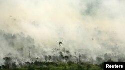 Kebakaran hutan tampak dari udara di Desa Muara Medak, Musi Banyuasin, Sumatra Selatan, 29 Juli 2018. (Foto: Reuters)