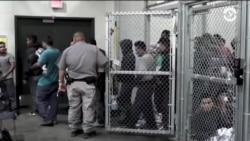 «Хаос с детьми нелегальных иммигрантов – вина правительства США, которое начало их отбирать у родителей»