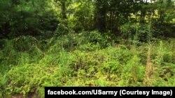 Кадр відео зі сторінки сухопутних військ США у Facebook