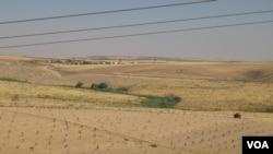 Turkiya-Suriya chegarasi, Kobani tevaragi