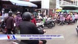Nông sản Trung Quốc vẫn về Đà Lạt bất chấp dịch Covid