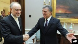 In this photo released by the Turkish Presidency Press Office, Turkish President Abdullah Gul, right, greets Iran's Foreign Minister Ali Akbar Salehi before a meeting in Ankara, Jan. 18, 2012.