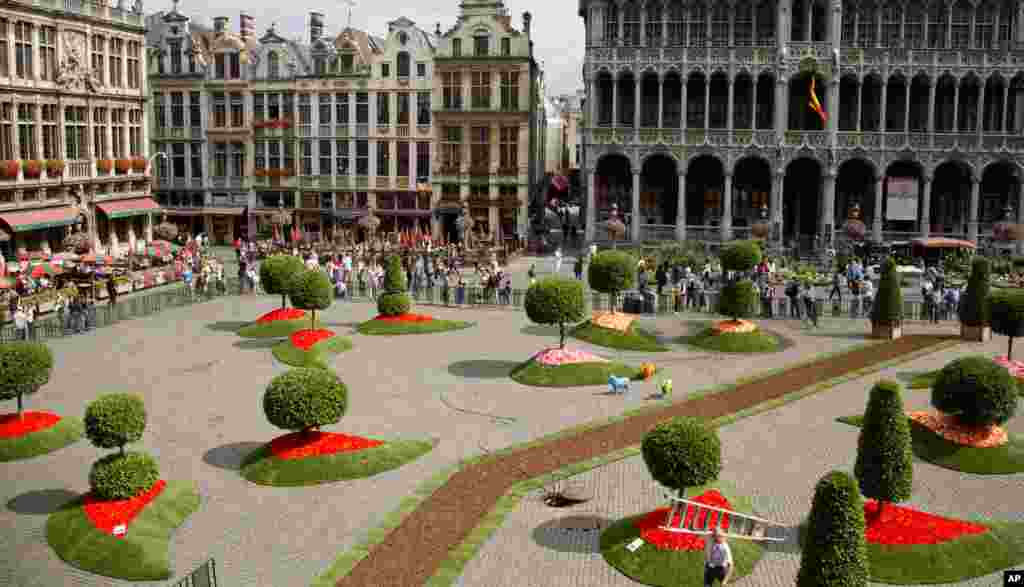 A worker carries a ladder through floral and topiary installations as he prepares for the opening of the first annual Floralientime event on the Grand Place in Brussels, Belgium. Internationally renowned landscape architects and floral artists will showcase their work in the square and the city hall for four days.