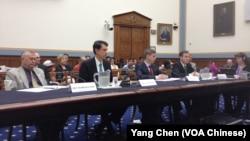 国会共和党众议员罗拉巴克(左一)和三位专家在听证会上作证