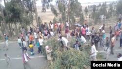Mormii Oromiyaa Arsii lixaa