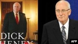 Cheney'den İşkenceye Destek