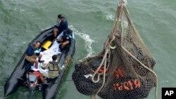 대형 그물에 에어아시아기 탑승자들로 추정되는 시신을 담겨 인도네시아 해군 함정으로 옮겨지는 모습.