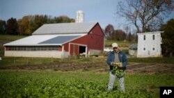 La producción agropecuaria en el país ascendió en 2012 a casi $395 mil millones de dólares.