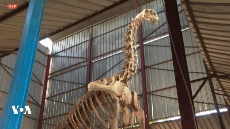 Le Musée Boubou Hama accueille plus de 100 000 visiteurs par an