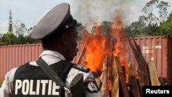 Seorang polisi memperhatikan pemusnahan kokain dan mariyuana sitaan di Paramaribo, Suriname, 19 April, 2011.