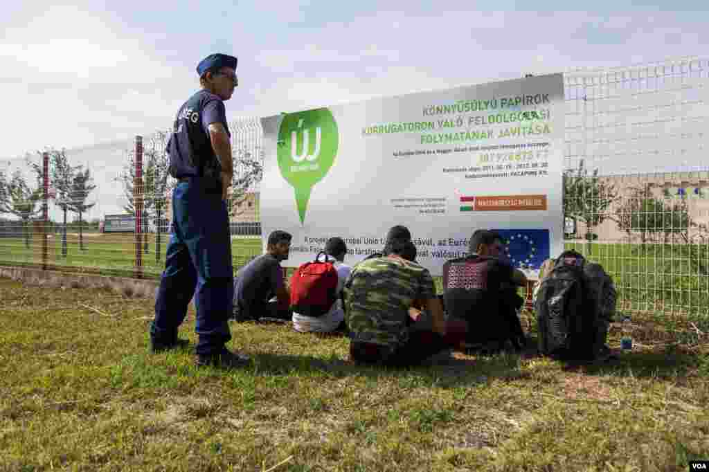 A police officer stands over a group of Afghan men who crossed the Hungarian border illegally Tuesday, Sept. 15, 2015. (A. Tanzeem/VOA)