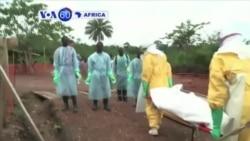 VOA60 Afirka: WHO da Cutar Ebola a Yammacin Afirka, Agusta 28, 2014