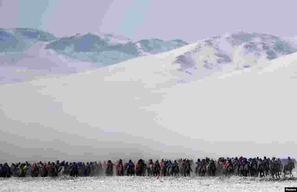 Moğolistan Ulanbatur'da at yarışı.
