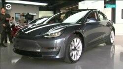 Tesla держит удар