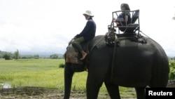 Du khách cưỡi voi ở Tây Nguyên, Đắk Lắk, Việt Nam.