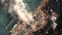 The earthquake and tsunami cut power to the Fukushima Dai-Ichi Nuclear Power Station, disabling its cooling systems