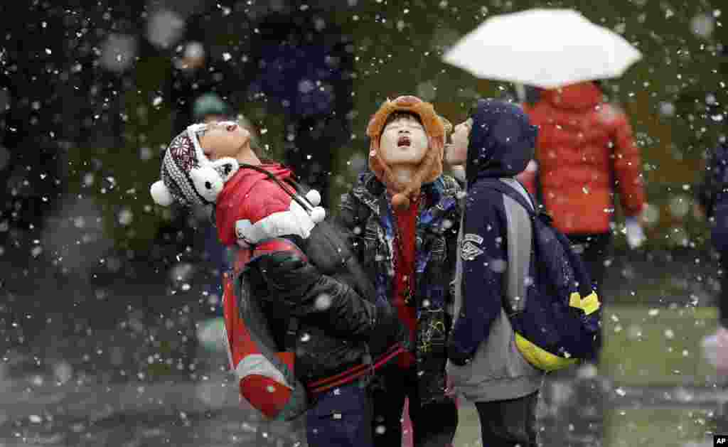 Students play in the snow in Seoul, South Korea, Nov. 27, 2013.