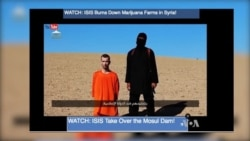 US `Reasonably Certain' Its Airstrike Killed 'Jihadi John' in Syria