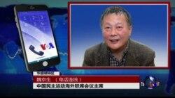 VOA连线魏京生: 中共三年查一百万贪官,十官九贪何时了?