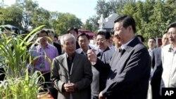 Bản tin Tân Hoa Xã đăng hình ông Tập trông khỏe mạnh đang xem cây, nắm tay trẻ em và nói chuyện với một số người lớn, ngày 15/9/2012.