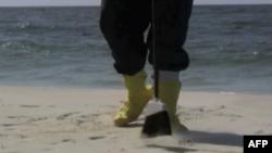 漏油事故发生后,志愿者帮助清理佛罗里达海滩
