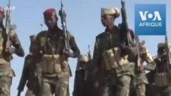 L'armée tchadienne se retire du Nigéria