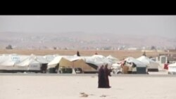 埃及热情接待叙利亚难民