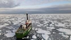 報導:美中俄等國計劃就北冰洋捕魚問題開展聯合研究