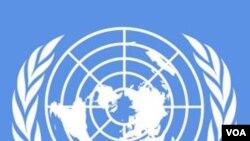 El canciller Lacognata dijo que la Asamblea General de la ONU debe convertirse en un verdadero parlamento del mundo.