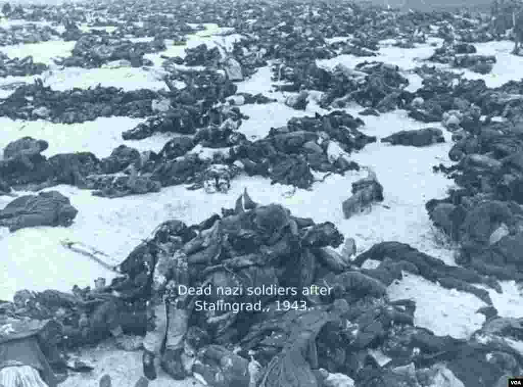 Nasist Almaniyasının öldürülmüş əsgərlərinin cəsədləri. Stalinqrad, 1943.