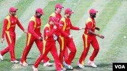 Cricket Chevrons.