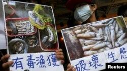 Người biểu tình kêu gọi Tập đoàn Formosa Plastics điều tra vụ cá chết hàng loạt ở Việt Nam, tại Đài Bắc, Đài Loan, 17/6/2016.