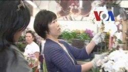 Lisa Tungka, Pemilik Usaha Merangkai Bunga - Liputan Feature VOA 2012
