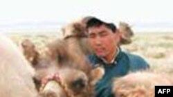 Çin İç Moğolistan'da Gerginliği Yatıştırmaya Çalışıyor