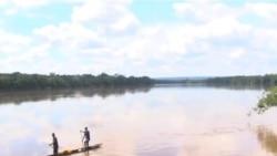 中非共和国全力打击盗猎者