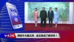 焦点对话:周旋于大国之间,金正恩成了香饽饽?