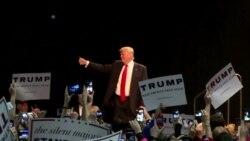 Trump Media Frenzy Continues