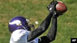 Minnesota Vikings new wide receiver Randy Moss catches a pass during NFL football practice, Thursday, Oct. 7, 2010 in Eden Prairie, Minn. Moss was traded Wednesday to the Vikings by the New England Patriots.
