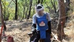 Desminagem no Kwanza Sul com cães e ratos – 1:58