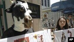 Các nhà hoạt động Hàn Quốc biểu tình chống việc nhập khẩu thịt bò Mỹ phía trước khu phức hợp chính phủ ở Seoul, ngày 2/5/2012