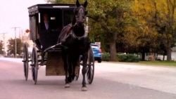 Simple Amish Life has Appeal, Converts